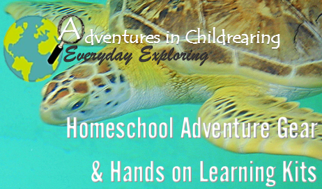 hands on learning kit