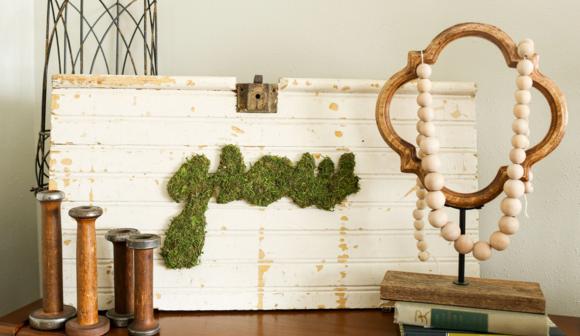 Frugal Family - DIY Moss Art