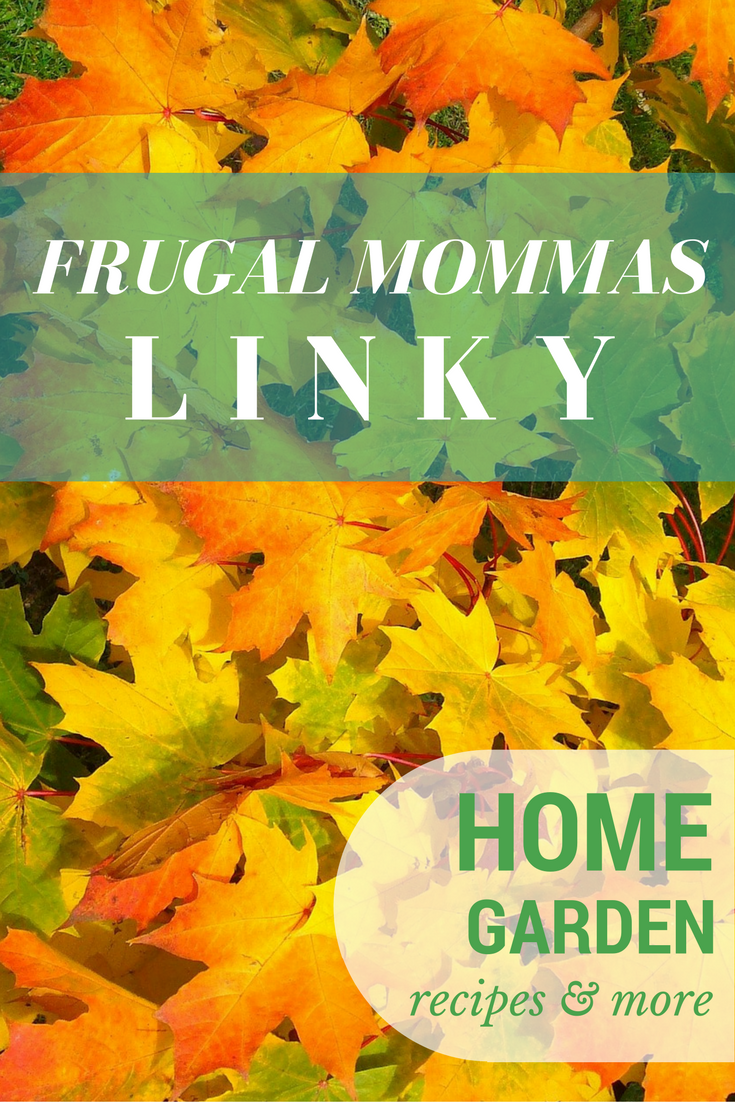 Frugal Mommas Linky