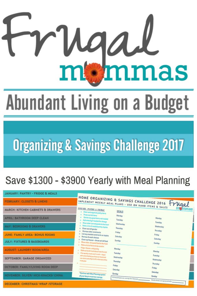 Frugal Mommas Organizing and Savings Challenge 2017